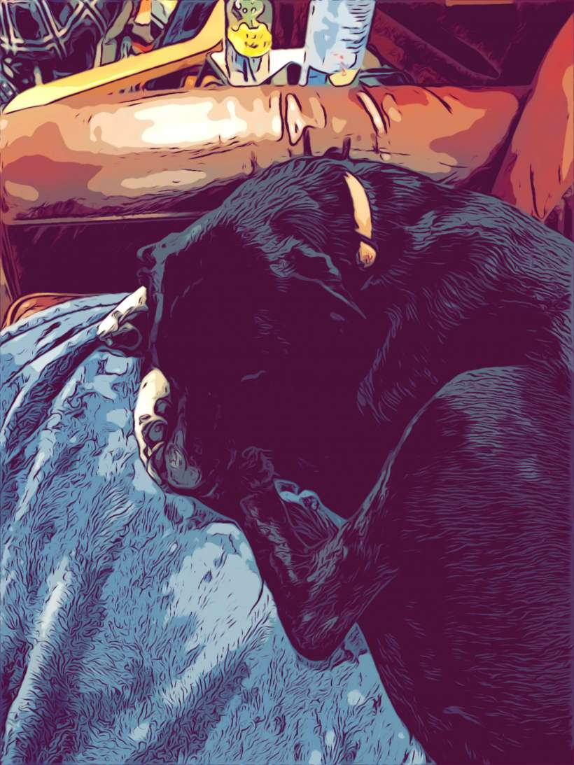 How to make your photos look like comic book art on iPhone and iPad.