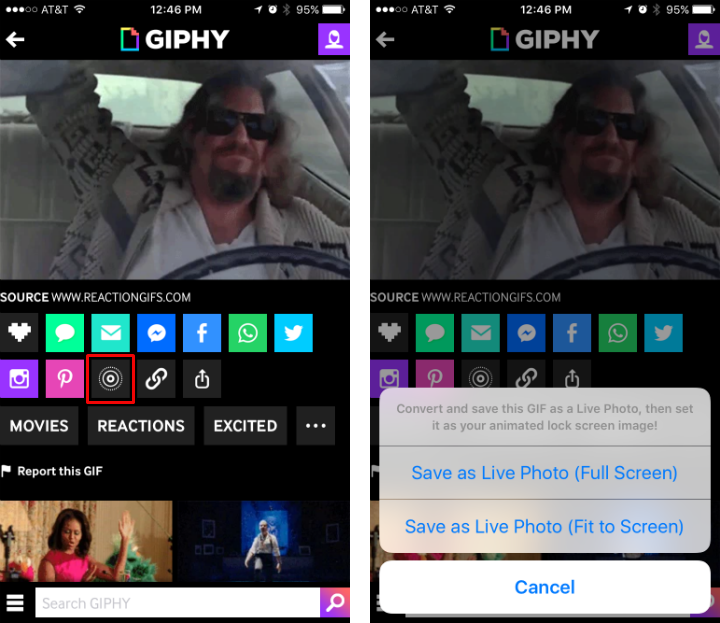 How to turn GIFs into Live Photos with Giphy on iPhone.