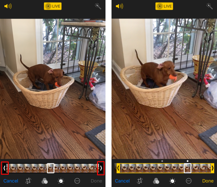 How to cut Live Photos and change the key photo on iPhone and iPad.
