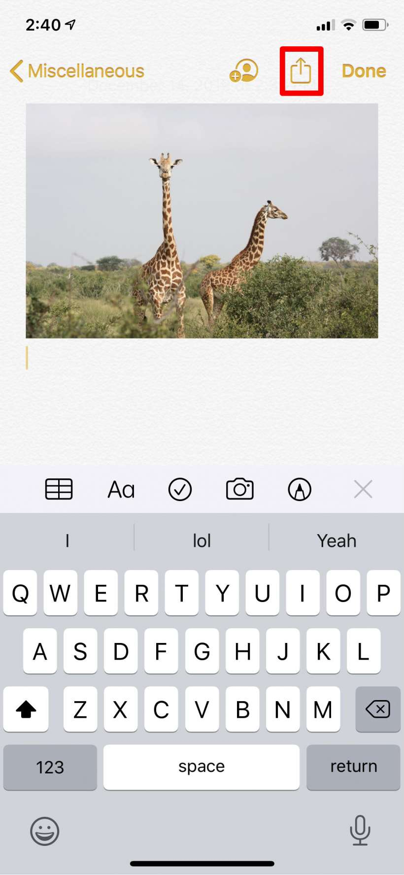 How to password protect a photo album on iPhone and iPad.