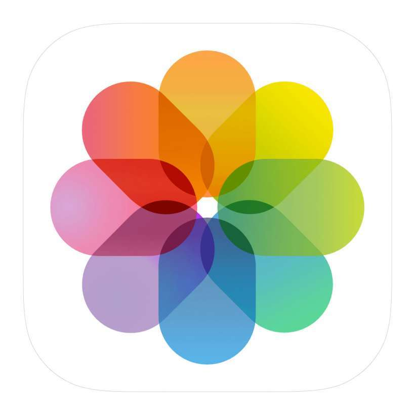 How to move photos of the same thing into an album on iPhone and iPad.