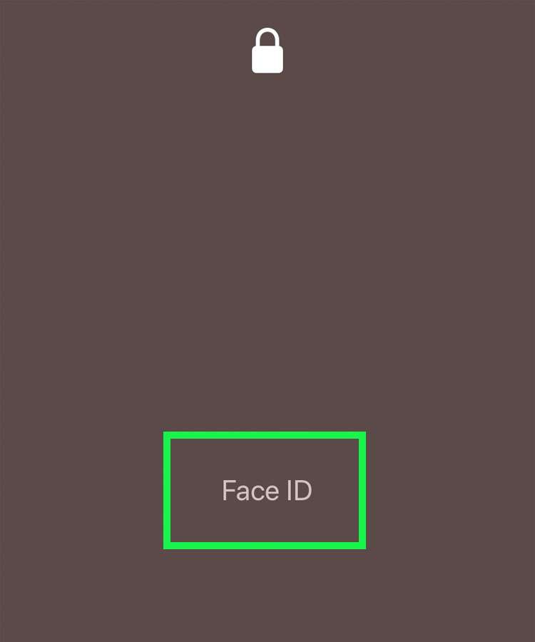 Bypass Face ID