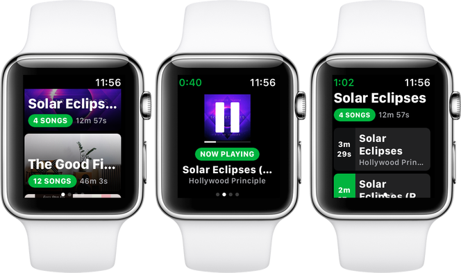 Spotify Apple Watch Snowy Spotty