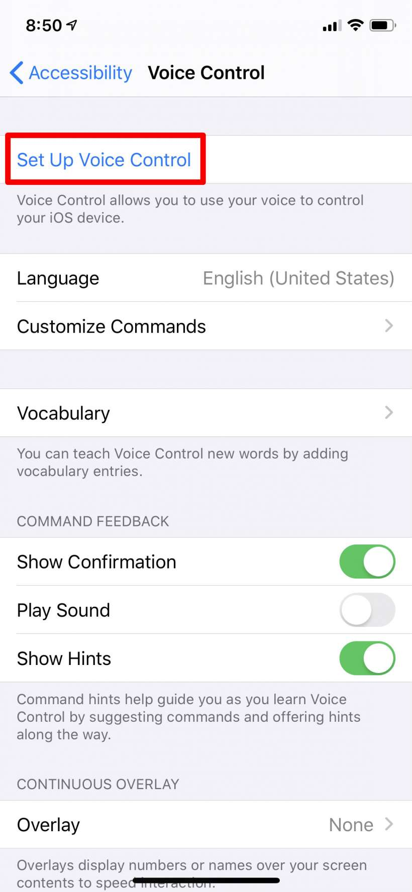 How to use Voice Control on iPhone and iPad.