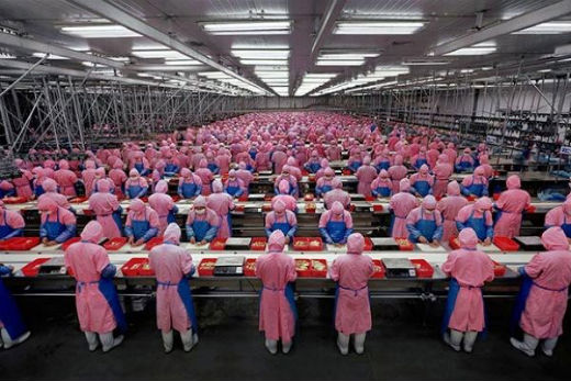 Foxconn to begin iPhone 6 production