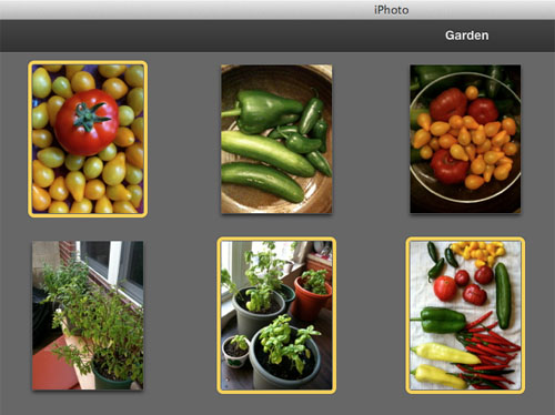 export images with iPhoto